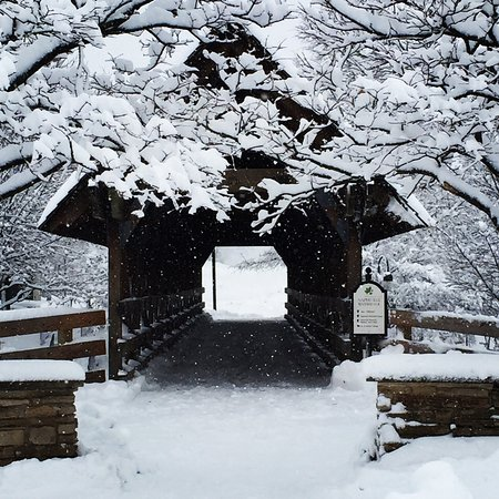 Нейпервилл, Илинойс: Winter covered bridge