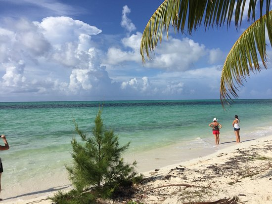 Grand Bahama Nature Tours Stop At Fortune Beach