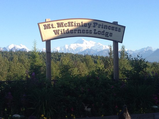 Denali Princess Wilderness Lodge: Mountain in the morning.
