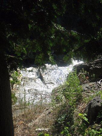 Owen Sound, Canada: downstream