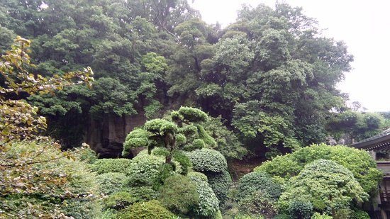 Hokokuji Temple (Takedera Temple): View from the yard