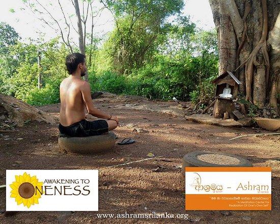 Τανγκάλε, Σρι Λάνκα: Meditation