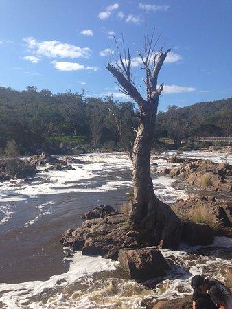 Brigadoon, ออสเตรเลีย: photo3.jpg