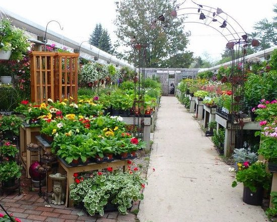 Kalkaska, MI: Garden Center