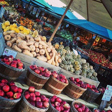 Kalkaska, MI : Fall Produce
