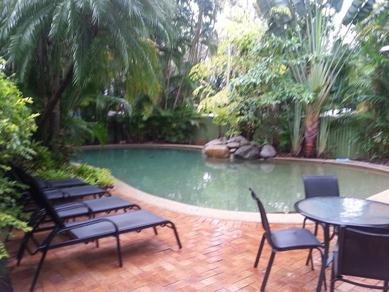 Palm Villas Port Douglas: The pool