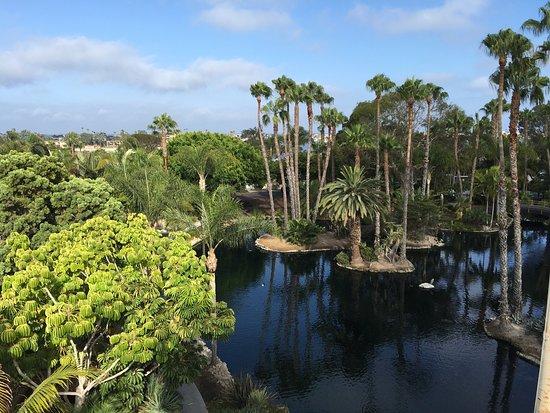 Paradise Point Resort & Spa: photo2.jpg