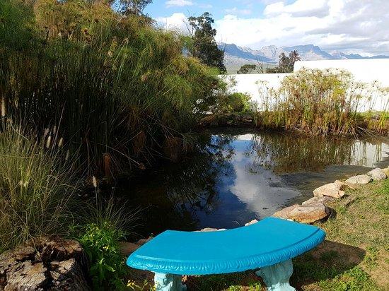 Clanwilliam, Sør-Afrika: 20160725_145930_large.jpg
