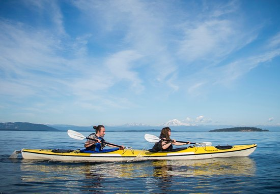 Eastsound, WA: Kayaking with Shearwater, Orcas Island