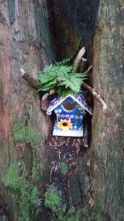 Сюррей, Канада: fairy house in Redwood park