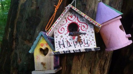 Surrey, Canada: happy indeed!