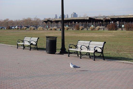 Liberty State Park 사진