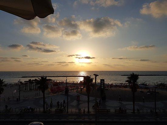 파크 플라자 오키드 텔아비브 사진