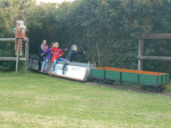 Redberry Farm: The train ride that goes through the fields, tunnel and pass the maze.
