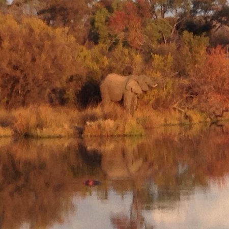 Waterberg, Sudáfrica: photo1.jpg