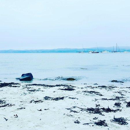 Isle of Gigha, UK: The Boathouse Cafe Bar