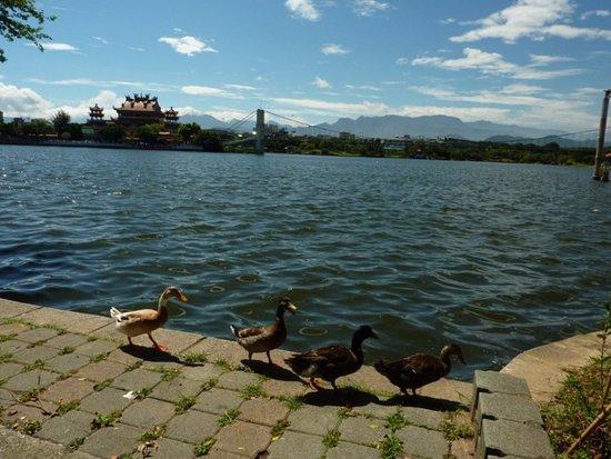 Longtan Tourist Pond