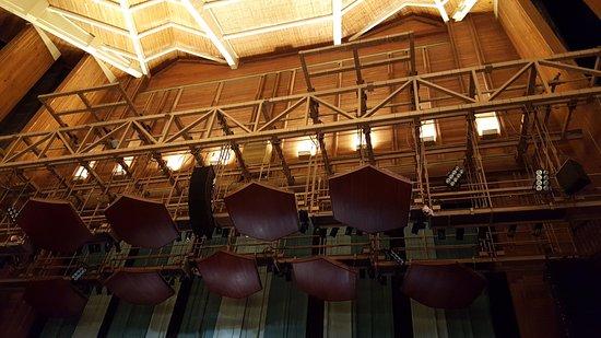 Βιέννη, Βιρτζίνια: Great ceiling