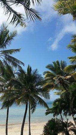 Beach Club: 20160719_131554_large.jpg