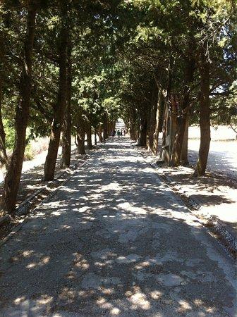 Филеримос, Греция: photo1.jpg