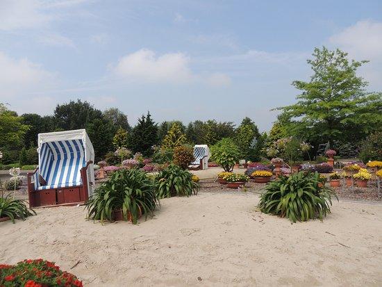 zauberhafter heidegarten bild von park der g rten bad zwischenahn tripadvisor. Black Bedroom Furniture Sets. Home Design Ideas