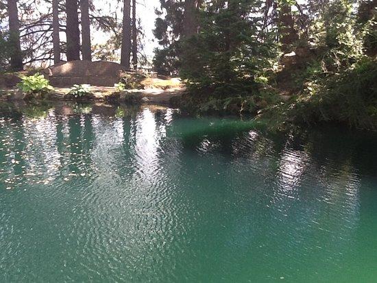 Wenatchee, WA: A quiet pool in Ohme Gardens