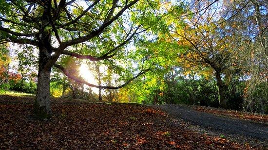 Λόφοι Αδελαΐδας, Αυστραλία: cold autumn day, but beautiful sights