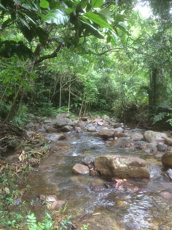 Adventures in Paradise Fiji: photo2.jpg