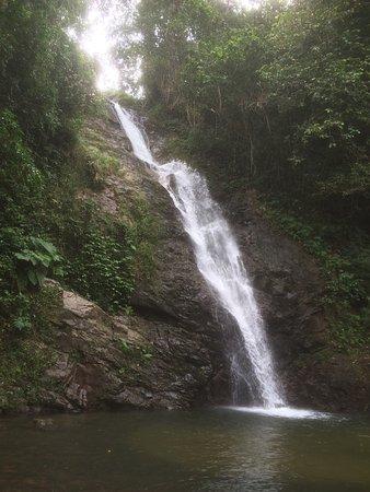 Adventures in Paradise Fiji: photo3.jpg