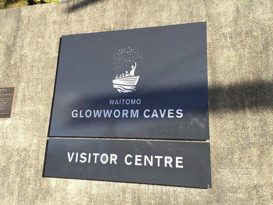 Waitomo Glowworm Caves 사진