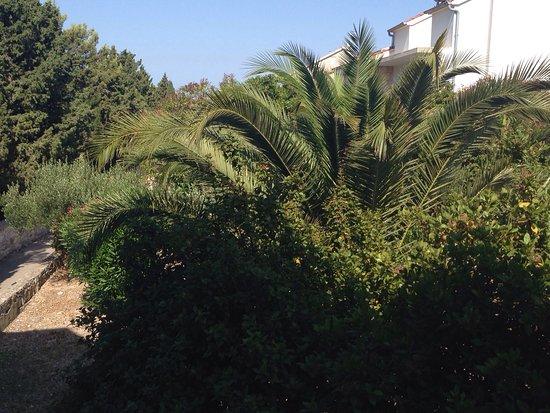 Amfora, hvar grand beach resort: photo0.jpg