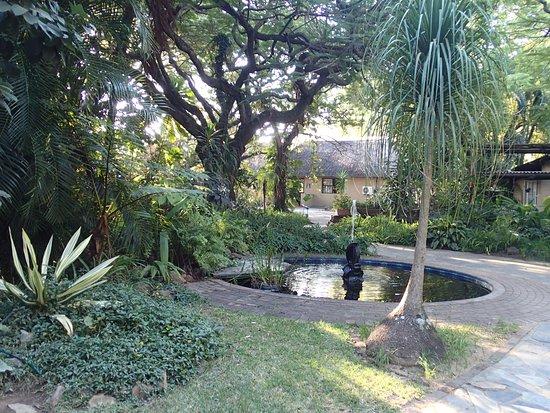 Bilde fra Hotel Numbi & Garden Suites