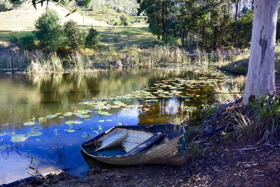 Mororo, Australie : one to the several dams around the property