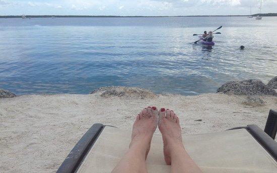 Hampton Inn Key Largo: View from the beach