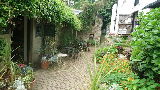 Ilfracombe, UK: DSC_0345_large.jpg