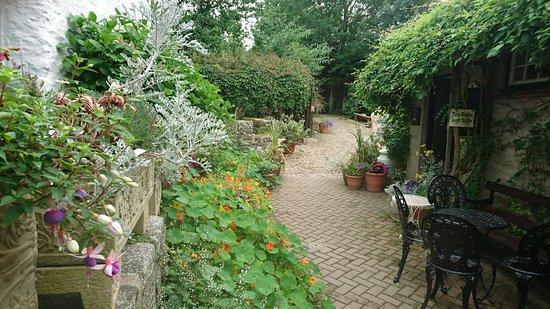 Ilfracombe, UK: DSC_0344_large.jpg