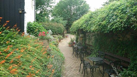 Ilfracombe, UK: DSC_0343_large.jpg