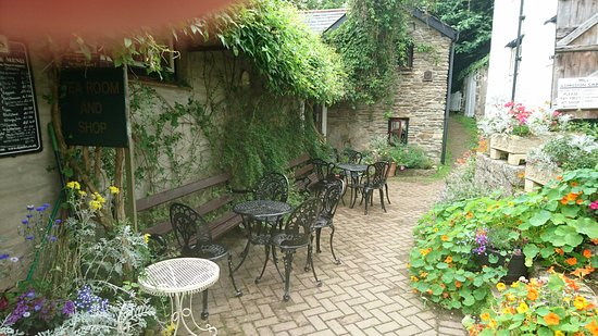 Ilfracombe, UK: DSC_0342_large.jpg