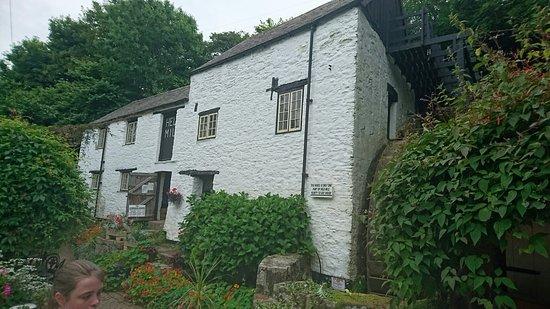 Hele Corn Mill & Tea Room: DSC_0340_large.jpg