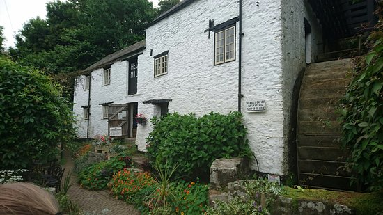 Hele Corn Mill & Tea Room: DSC_0339_large.jpg