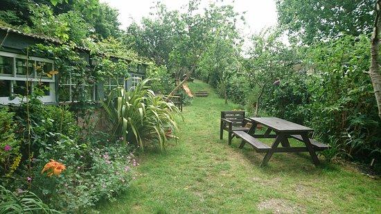 Hele Corn Mill & Tea Room: DSC_0338_large.jpg