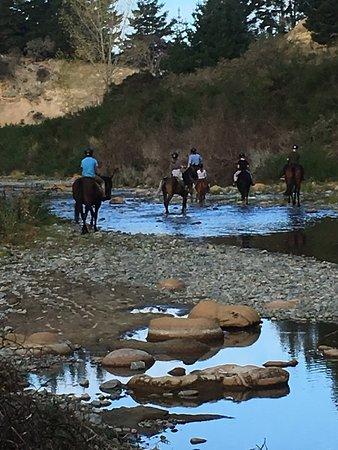 Oamaru, Nuova Zelanda: Explore the Waianakarua river, pass the Taniwha lair, Hobbit Chairs and Moeraki Boulder nursery
