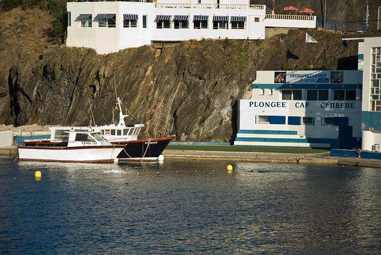 Plongée Cap Cerbère: Le club de plongée et leurs bateaux