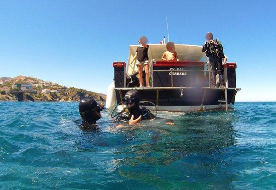 Plongée Cap Cerbère: En plongée