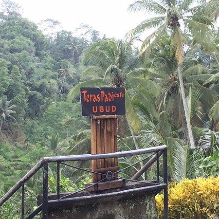 Tegalalang, Indonesië: Fine little spot to settle for lunch