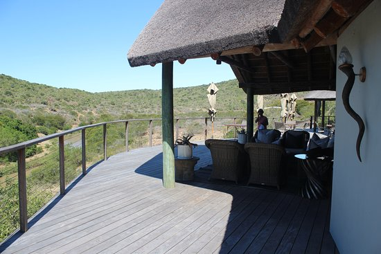 Kwandwe Private Game Reserve, Sør-Afrika: The view from the veranda