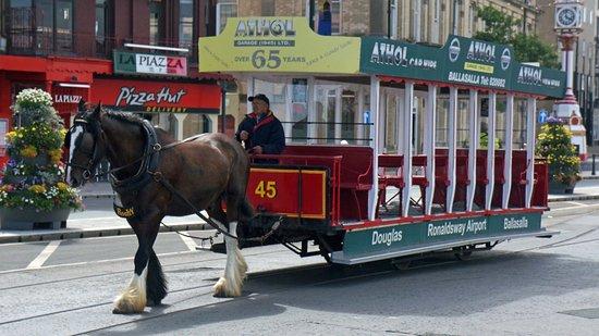 Douglas Bay Horse Tramway Foto