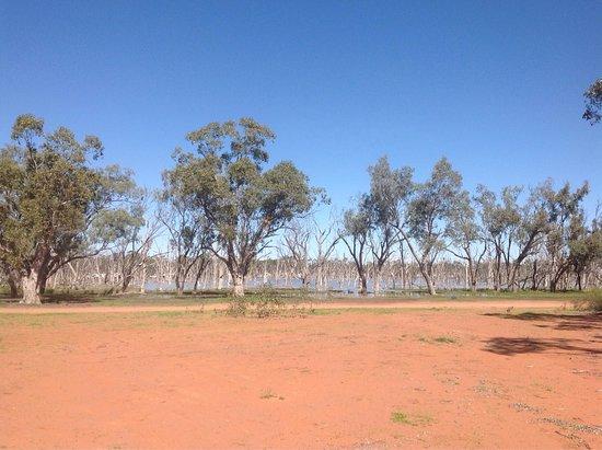 Barcaldine, Australien: photo3.jpg