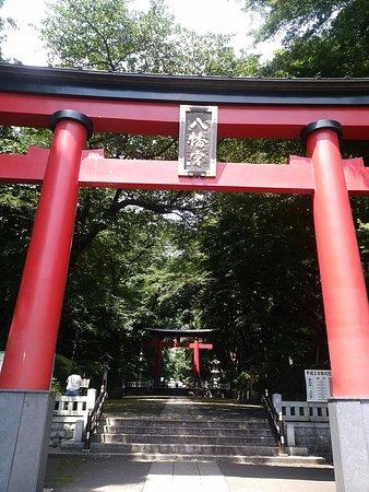 杉並区, 東京都, DSC_1261_large.jpg