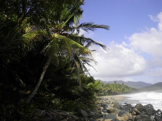 maunabo county Browse jobs in maunabo county, puerto rico from 1,000s of job boards and employer websites by city juju makes your maunabo county.